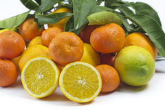 Mandarini dei mandarini delle arance isolati Fotografia Stock