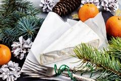 Mandarini del Brie e rami dell'abete Squisitezze per i feas Immagine Stock Libera da Diritti
