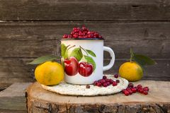 Mandarini e mirtilli rossi Fotografia Stock Libera da Diritti
