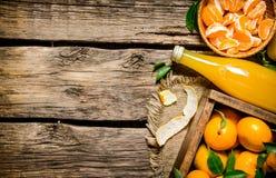 Mandarini freschi Fotografie Stock