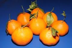 Mandarini freschi di Mineola con le foglie Il concetto di cibo sano, dell'agrume e della vitamina C immagine stock
