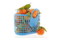 Mandarini isolati sopra fondo bianco Fotografia Stock