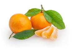 Mandarini isolati su bianco Fotografia Stock Libera da Diritti