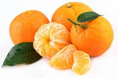 Mandarini isolati su bianco Immagine Stock Libera da Diritti