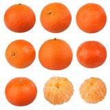 Mandarini isolati su priorità bassa bianca Immagini Stock