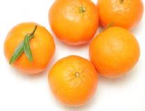 Mandarini isolati su priorità bassa bianca Fotografie Stock