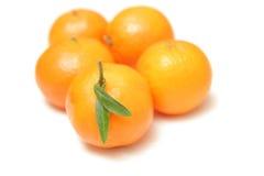 Mandarini isolati su priorità bassa bianca Immagine Stock Libera da Diritti