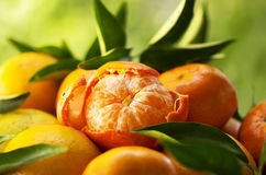 mandarini, mandarino sbucciato Fotografie Stock