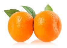 Mandarini maturi con le foglie isolate su bianco Immagini Stock