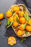 Mandarini selezionati freschi su una tavola scura Vista superiore Immagini Stock