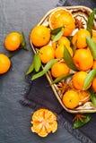 Mandarini selezionati freschi su una tavola scura Vista superiore Fotografie Stock Libere da Diritti