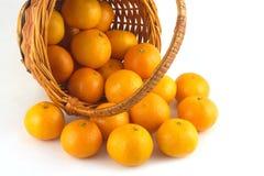 Mandarini sparsi dalle disposizioni del canestro di vimini isolati Fotografia Stock Libera da Diritti