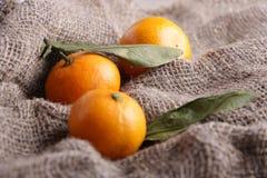 Mandarini su tela di canapa Fotografie Stock Libere da Diritti
