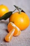 Mandarini su tela di canapa Immagini Stock