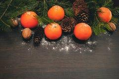 Mandarini su un fondo scuro Fotografia Stock