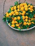 Mandarini sul mercato di Dalat nel Vietnam Immagini Stock Libere da Diritti