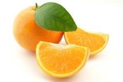 Mandarino con i fogli Fotografie Stock