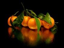 Mandarino con i fogli Immagine Stock Libera da Diritti