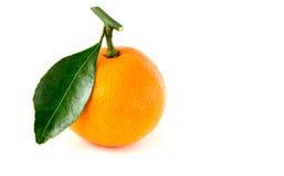 Mandarino con una foglia Fotografie Stock Libere da Diritti