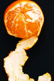 Mandarino delizioso Immagini Stock