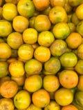 Mandarino dell'arancia del monticello Immagine Stock