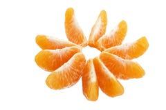 Mandarino della frutta su fondo bianco, forma del fiore fotografie stock libere da diritti