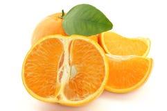 Mandarino dolce Fotografia Stock Libera da Diritti