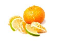 Mandarino e calce freschi Immagine Stock Libera da Diritti