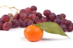 Mandarino ed uva Immagini Stock