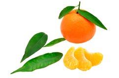 Mandarino, fette e foglie Fotografia Stock Libera da Diritti