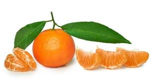 Mandarino isolato Immagine Stock Libera da Diritti