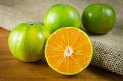 Mandarino, mandarini Fotografie Stock Libere da Diritti