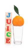 Mandarino maturo fresco Fotografia Stock Libera da Diritti