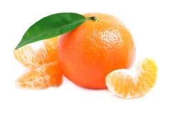 Mandarino maturo isolato. Fotografia Stock Libera da Diritti