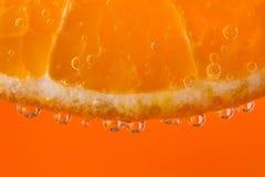 Mandarino nelle bolle Fotografia Stock Libera da Diritti