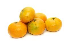 Mandarino sei Immagini Stock