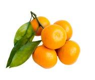 Mandarino su priorità bassa bianca Immagini Stock Libere da Diritti