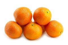 Mandarino sugoso fotografie stock libere da diritti
