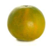 Mandarino verde Immagini Stock