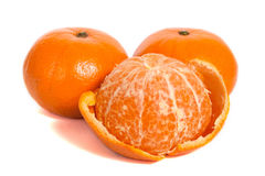 mandarins Royaltyfri Foto