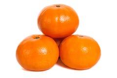 mandarins Royaltyfria Bilder