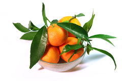 Mandarins. Fresh mandarins from my garden, Greece royalty free stock photos