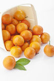 Mandarins. Some mandarins in a box on white background Royalty Free Stock Photography