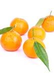 Mandarins. Fresh raw mandarins on white background in studio Royalty Free Stock Images