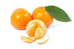 Mandarins Fotografering för Bildbyråer