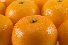 Mandarins Stock Image