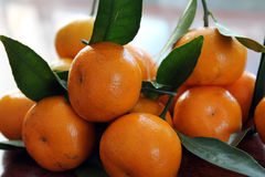 mandarins Imagens de Stock Royalty Free