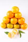 mandarins Arkivbilder