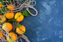 mandarins stock fotografie