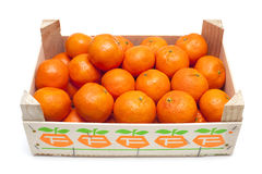 Mandarins in box Stock Images